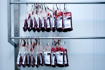Transfúzní služba v Bruntále opět nabídne odpolední termíny odběrů plazmy